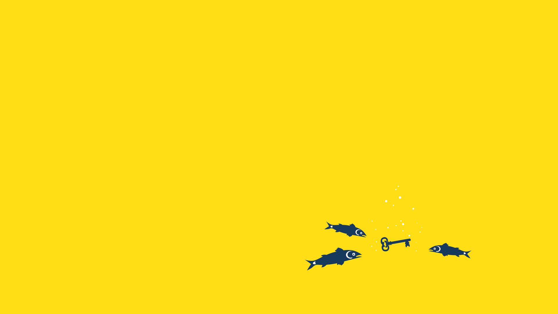 Full Size 1920×1080 animation 2